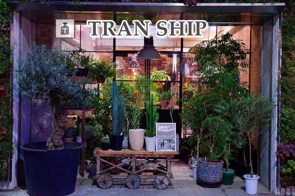 TRANSHIP(トランシップ)